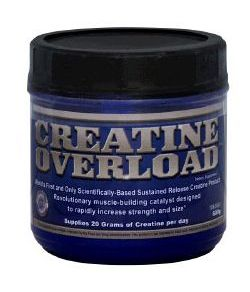 Creatine Overload 600 GR